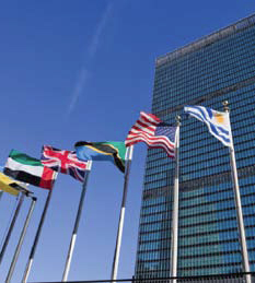 Multinational Flags In front of a Tall Building