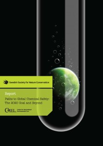 pubs Paths_GlobalChemSafety_Mar2013