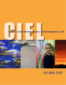 CIEL 2006 Annual Report