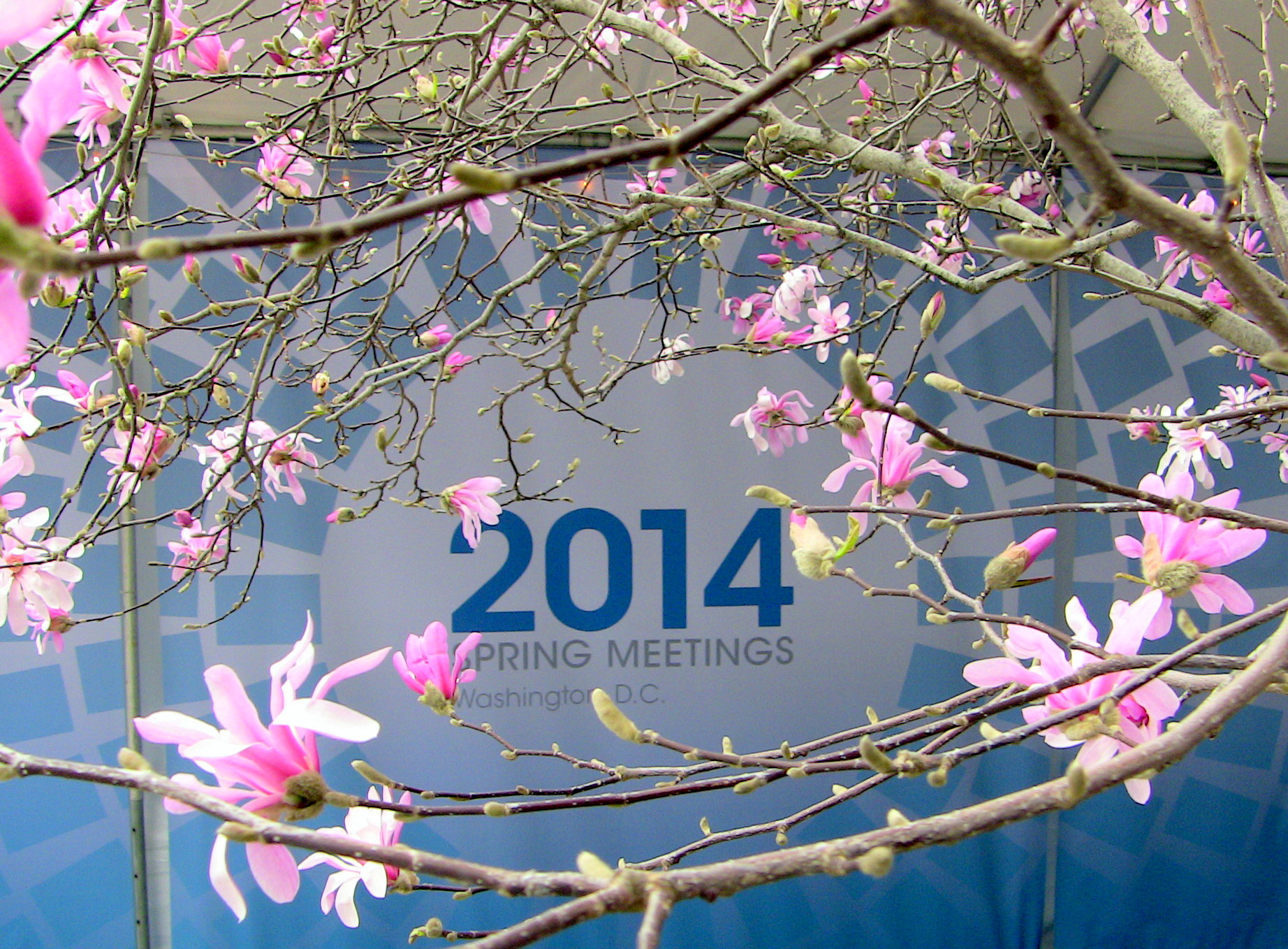 Spring4HumanRights – The 2014 Spring Meetings of the World